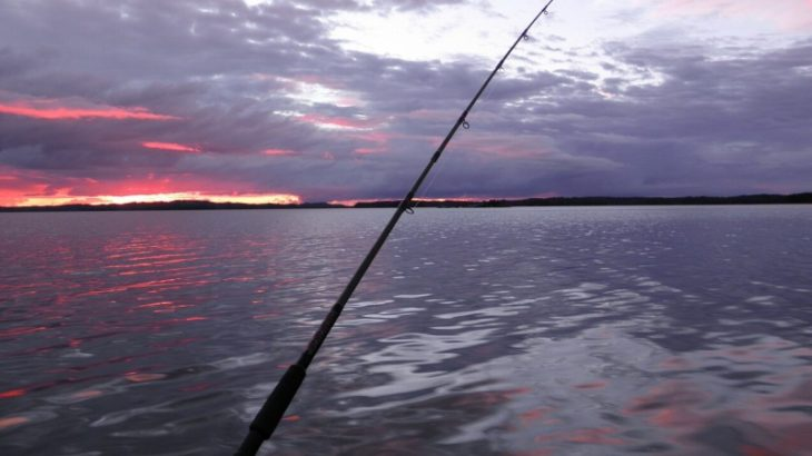壱岐の遊漁船お勧め5選!船釣りならここに予約