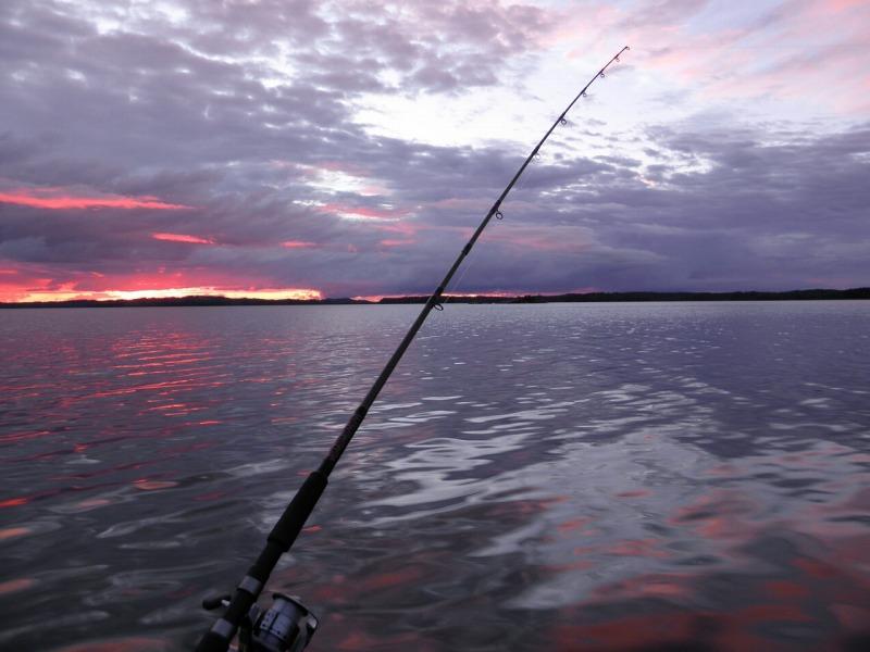 壱岐 釣り船